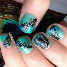 peacock @Melissa Squires Meaker !!!!!!!!!!!!!!!!!!!!!!!!!!!!!!!!!!!!!!!!!!!!!!!!!!