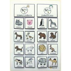 Třídíme: Zvířata domácí / v ZOO. Strukturované učení - Jiný svět