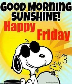 Good Morning Friday Images, Good Morning Snoopy, Good Morning Funny, Good Morning Sunshine, Good Morning Quotes, Morning Images, Good Morning Smiley, Happy Friday Morning, Funny Good Night Quotes
