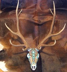By Michelle Bartram/ Custom European Mounts/ Skull Art/ Taxidermy Art/ Washington/ United States Bull Skulls, Deer Skulls, Animal Skulls, Elk Skull, Skull Art, Skull Decor, Deer Decor, European Mount, Native American Decor