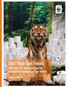 Don't Flush Tiger Forests - Toilet Paper, Supermarkets, and Indonesia's Last Tiger Habitats. A report by the World Wildlife Fund. Paseo and Livi brand products are the ones to avoid if you want to do your bit to stop flushing the forests.