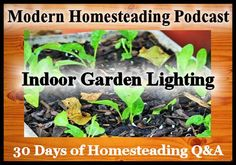 Today is Day 16 of our 30 days of homesteading Q&A on the podcast where I have reached out to some of the best bloggers and podcasters in the homesteading space to answer your questions about h…