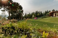 Golf Courses, Garden Architecture, Nature, Homes