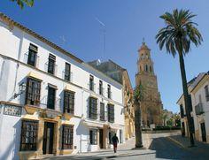 Bajo Guadalquivir, en la cuna del flamenco