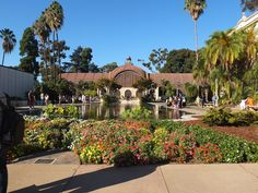 Over 20 museums and family attractions await kids at Balboa Park in San Diego, but I bet you've only heard of a few of them, the famous San Diego Zoo most likely one of them. While families need days to see them all (and hours to see some), the following three Balboa Park museums for kids you've overlooked include: