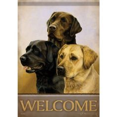 """Labrador Dog Trio Decorative House Flag by Flag Trends. $24.95. Brand New Design. Large Double Sided Decorative Flag is 28 in. x 40 in.. Great Idea for Gifts. Readable on both sides.. Large Double Sided Decorative Flag is 28 in. x 40 in. and readable on both sides. These are Permanent Dye Outdoor Flags that feature """"Dura Soft"""", an innovative fabric designed specifically for decorative flags. The 3-ply construction is heavier and more durable than the competition, yet ma..."""