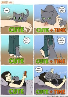 cute time cats comic