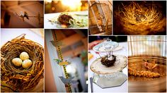 Bird wedding details, Templeton California, Shanni Weilert