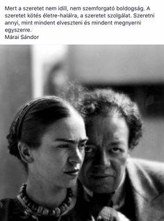 Márai Sándor-Szeretet ♡ Motto, Favorite Quotes, Motivational Quotes, Feels, Calm, Marvel, Sayings, Live, Words