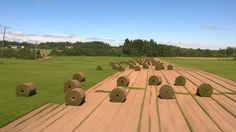 Baseball Field, Golf Courses