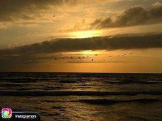 """Buenos días para todos!  """"Una oportunidad es como el amanecer  si esperas demasiado tiempo para salir de la cama... Te lo pierdes"""" Fotografía de @laura_vanderbiest _________________________________ #photo #instapic #picoftheday #igers #photooftheday #igersvenezuela #socialmedia #sunrise  #instagood #sunset #falcon #venezuela #paraguana #elnacionalweb #phoneography #pic #share #pfgcrew #sky  #haztenotar #clouds #igersfalcon #adicora by @puntofijoguia"""