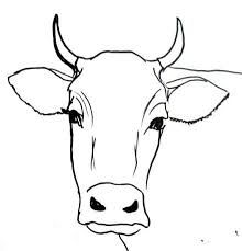 Related Image Cow Drawing Easy Easy Drawings Plane Drawing Drawing Step Tracing