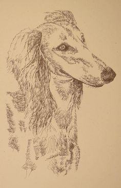 Saluki: Dog Art Portrait by Stephen Kline, art drawn entirely from the word Saluki. He also can add your dog's name into the lithograph. - drawdogs.com : drawdogs.com His collectors number in the thousands from over 20 countries and every state in the US. Kline's dog art has generated tens of thousands of dollars for dog rescues worldwide. http://drawdogs.com/product/dog-art/saluki-dog-portrait-by-stephen-kline/