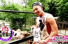 Taeyang... I don't blame you giraffe lol
