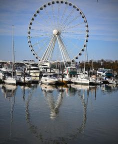 The Ferris Wheel at National Harbor