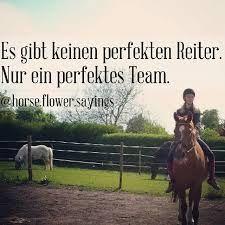 Bildergebnis für pferdesprüche vertrauen