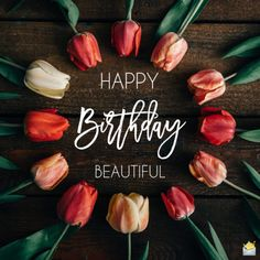 Happy Birthday Wishes, Quotes & Messages Collection 2020 ~ happy birthday images Happy Birthday For Her, Happy Birthday Princess, Happy Birthday Celebration, Happy Birthday Flower, 23rd Birthday, Happy Blessed Birthday, Hapoy Birthday, Birthday Ideas, Birthday Quotes For Her
