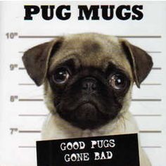 Pug Mugs Book. $15.95 #gifts #pugs They may be small, round, and sweet, but the mugs on these pugs can't always be trusted. Hidden beneath the big eyes and innocent-looking faces often lurks a pug who has waddled to the wrong side of the tracks. 96 pages