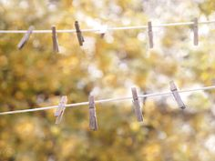 Hey, I found this really awesome Etsy listing at https://www.etsy.com/listing/169795435/clothesline-and-clothespins-laundry