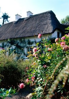 Cottage in Stradbally, Co Waterford, Ireland - Stradbally is a town in County Laois, Ireland, located in the midlands of Ireland along the N80 road.