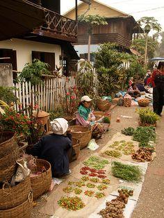 Spice sellers in Luang Prabang, Laos by Anguskirk, via Flickr