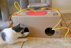 Make cat toys yourself: fantastic ideas for cat lovers Diy Cat Toys, Homemade Cat Toys, Diy Jouet Pour Chat, Animal Projects, Cat Crafts, Cat Supplies, Cat Furniture, Unusual Furniture, Diy Stuffed Animals