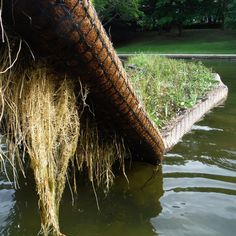 Biomatrix Floating Island Ecosystem