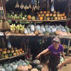 In Laos durante il tragitto sulle montane tra Vang Vieng e Vientiane puoi comprare bellissime zucche #acquistisostenibili #cambogiaviaggi #particonnoi #travelways #nonsolocanbogia #laos #sudestasiatico http://ift.tt/2beKB9I