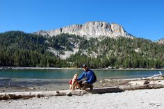 California (Eastern Sierra) - Hiking with Dogs: Mammoth Pass, McLeod Lake and beyond, August 15 2015