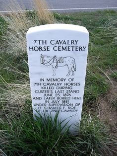 memorial of the horses killed in the battle of little big horn