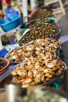 Crabs - Cambodian Street Food, Siem Reap, Cambodia