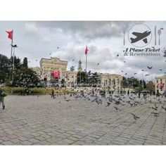Istanbul's Beyazit Meydani. The square is right next to the Grand Bazaar and the birds flight in unison. It's amazing sight. Check out our Travel deals. Direct link in our profile!  Facebook @ A Plane Ticket & Reservations  Twitter @ aPlaneTixNReso http://ift.tt/24sZ233 #aPlaneTicketAndReservations #Travel #Foodie #Wanderlust #Vacation #Traveler