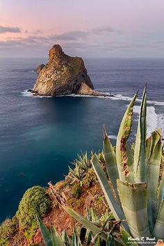 Roques de Anaga, Tenerife, Islas Canarias,  Spain.