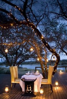 Fancy outdoor dinner.Light up the trees in the yard with twinkle lights