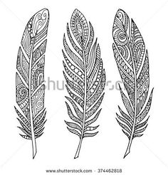 Hand drawn feathers. Zentangle pattern for coloring book