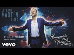 El Gran Martín Elías - Mi Par De Polluelos (Cover Audio)