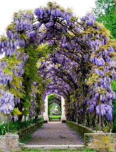 Il Parco di Villa Pisani 245 | Stra, Veneto, Italia; built 1… | Flickr - Photo Sharing!