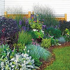 This is so much like my one corner garden! Low-care plantings look great and don't take up a lot of time. This planting incorporates tough plants such as daffodils, switchgrass, blue caryopteris, blue fescue, and purple-leaf Joe Pye weed. Lawn And Garden, Home And Garden, Garden Oasis, Lush Garden, Garden Spaces, Herb Garden, Garden Beds, Landscape Design, Garden Design