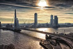 Kunstwerk: 'Rotterdam Skyline in the morning (Landscape)' van Rob van der Teen Rotterdam Architecture, Rotterdam Skyline, 3d Foto, Skyline Silhouette, Most Beautiful Cities, San Francisco Skyline, New York Skyline, Poster, City