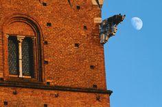 Il Palazzo, la Lupa e la luna. Foto di Andre Tenenbaum su http://500px.com/photo/42236528