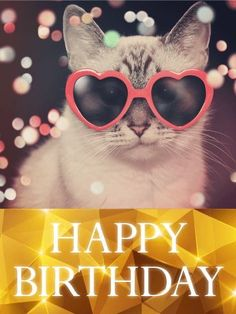 Send Free Hip Cat Happy Birthday Card to Loved Ones on Birthday & Greeting Cards by Davia. It's free, and you also can use your own customized birthday calendar and birthday reminders. Happy Birthday Art, Happy Birthday Wishes Cards, Happy Birthday Pictures, Birthday Wishes Quotes, Birthday Greeting Cards, Card Birthday, Birthday Calendar, Birthday Reminder, Animal Birthday