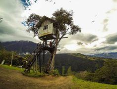 The Crazy Swing At Casa Del Arbol