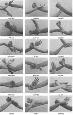 The martial arts of bending: Part 3 - Earth Neutral jing - Sticky Hands This. - The martial arts of bending: Part 3 – Earth Neutral jing – Sticky Hands This image has get - Wing Chun Martial Arts, Kung Fu Martial Arts, Martial Arts Workout, Martial Arts Training, Mixed Martial Arts, Boxing Workout, Kung Fu Techniques, Martial Arts Techniques, Self Defense Techniques