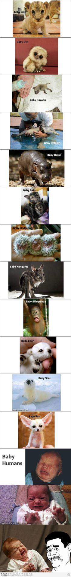 Hahahahahh God! You did something terribly Wrong!