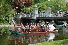 Swan boats in the public garden.