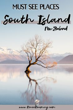 There are endless reasons why you should visit the South Island of New Zealand! The varied landscapes, friendly people, cute wildlife and epic hikes are just the beginning. The following destinations and activities were my absolute favorites during my South Island road trip. I would highly recommend you check them out! | Best things to see on the South Island of New Zealand | Wanaka Tree | Wanaka things to do | New Zealad road trip | Beginner Photography, Landscape Photography Tips, Landscape Photos, Travel Photography, Amazing Destinations, Travel Destinations, Travel Pictures, Travel Photos, Travel Guides