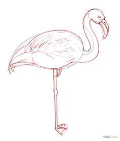 114 best flamingo drawing