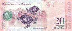 (Reverso). Billete del Banco Central de Venezuela. 20 Bolívares Fuerte.  Fecha Diciembre 19 2008. Serie Z8.