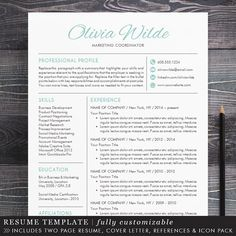 Resume Template  Cv Template  Cover Letter  Professional Resume
