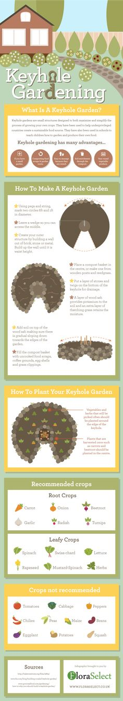 Keyhole Gardening - Do you fancy an infographic? There are a lot of them online, but if you want your own please visit http://www.linfografico.com/prezzi/ Online girano molte infografiche, se ne vuoi realizzare una tutta tua visita http://www.linfografico.com/prezzi/